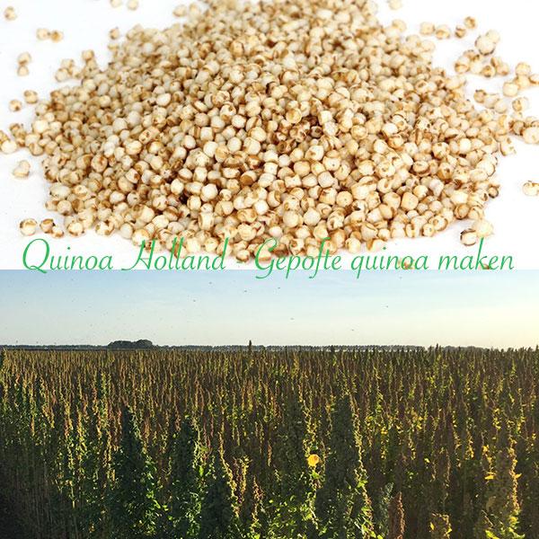 gepofte quinoa maken